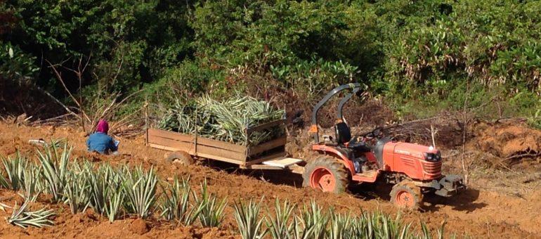 Les atouts de la Girardin Agricole